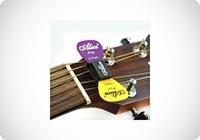 Alice - Porta-plettri per chitarra