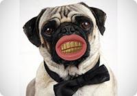 Thumbs Up PIMCHEW - Gioco per Cani Pimp Chew Toy